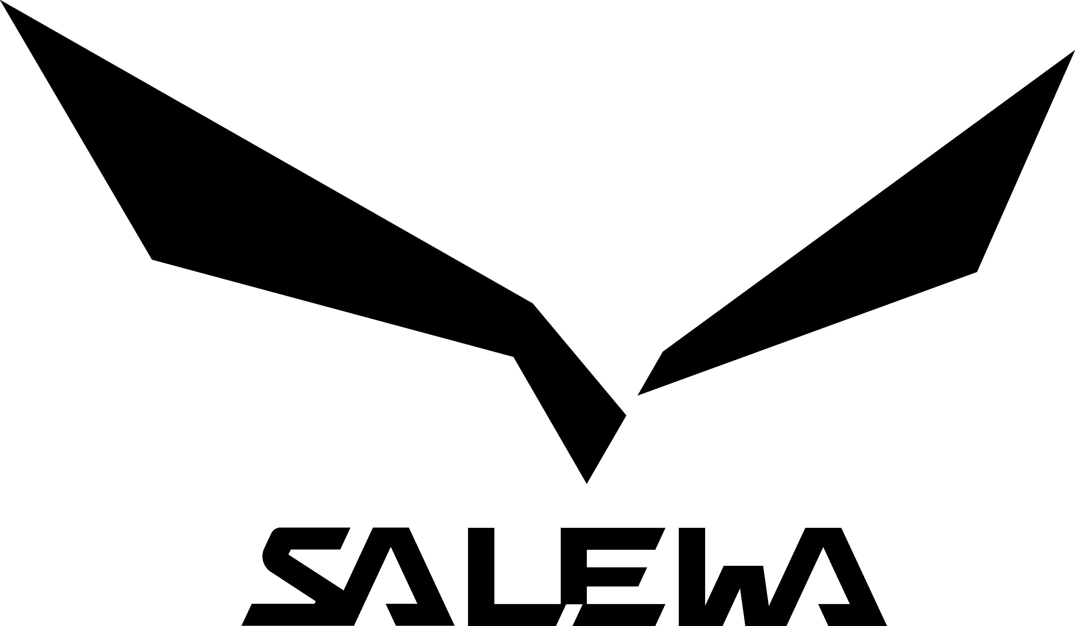 salewa-bergwerk villanders logo - Bergwerk Villanders